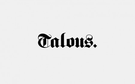 Talous Consulting 4