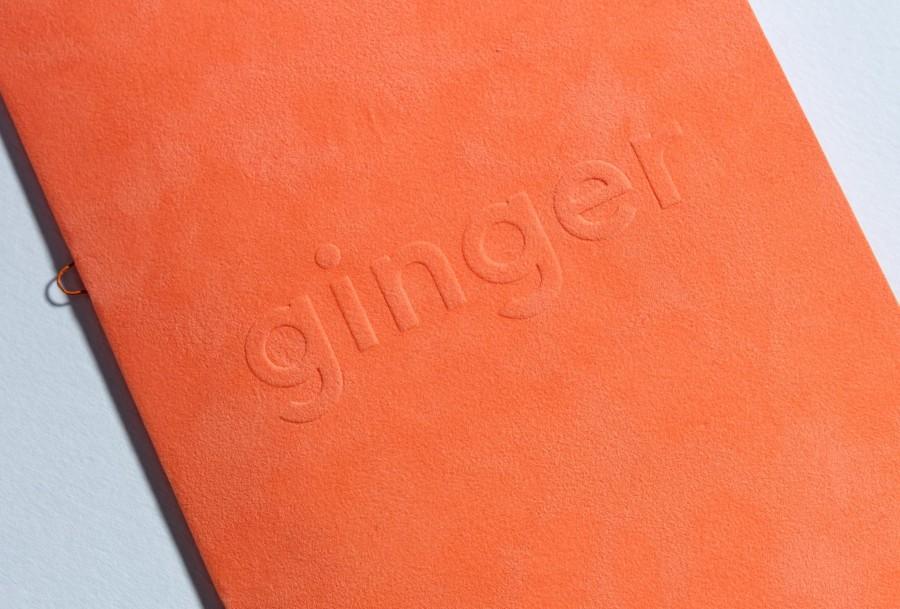 ginger font 1
