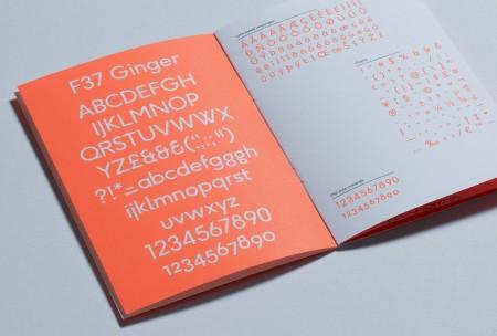 ginger font 3