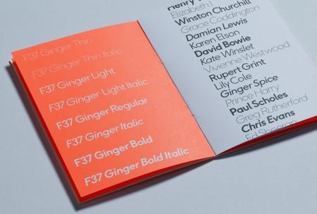 ginger font 5