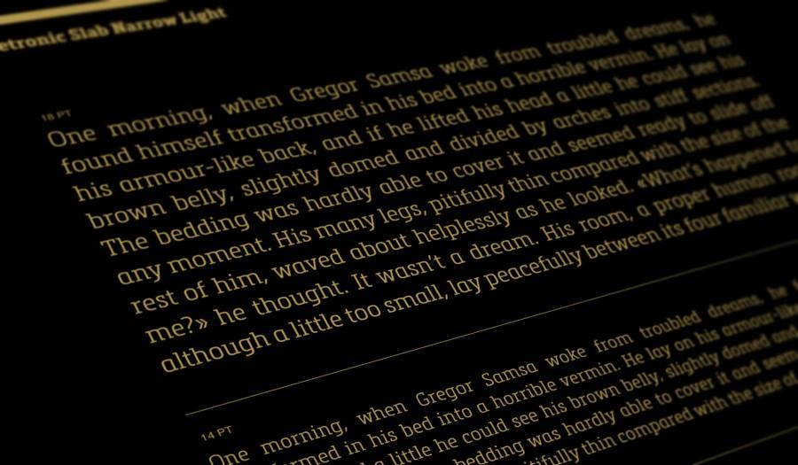 Metronic Slab Narrow Typeface 1